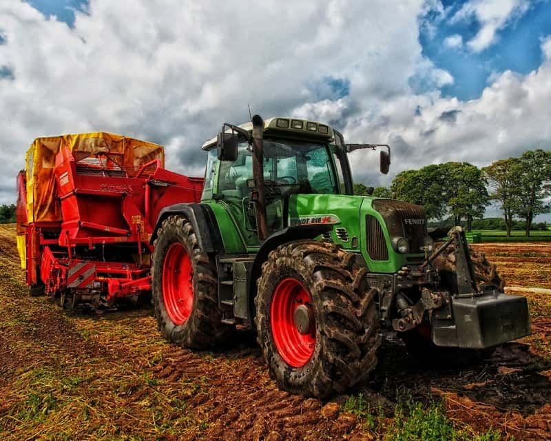 Agriculture sector - Sagars Chartered Accountants & Business Advisers